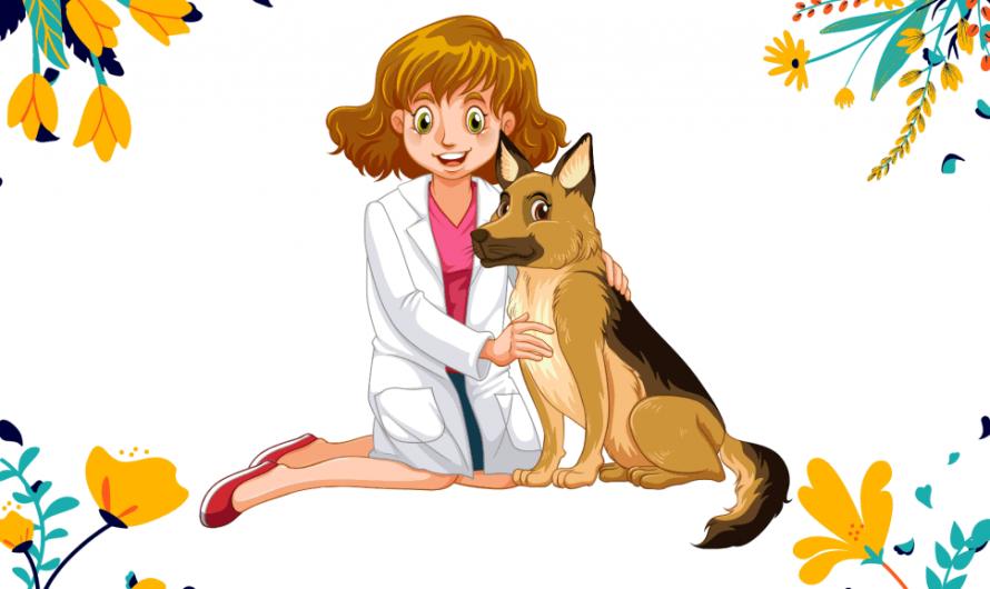 31 августа — День ветеринарного врача
